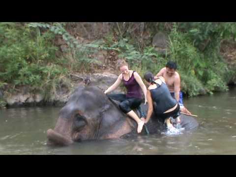 Elephant ride in Pai III.