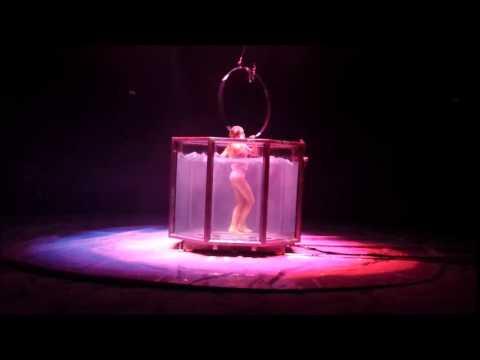 Wetlook im Zirkus